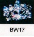 bw17.jpg