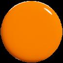20497_p_tropicalpop_web.png